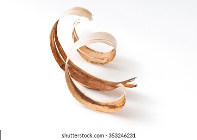 Barks. Wood shavings in a carpenter's masterpiece.