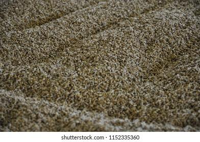 Barley floor malting