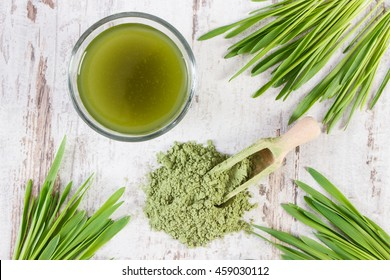 Barley grass with cup of beverage and young powder barley with scoop, healthy nutrition and lifestyle, body detox