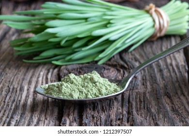 Barley grass powder on a spoon, with freshly harvested leaves in the background
