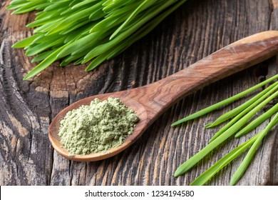 Barley grass powder on a spoon with fresh plant on a table