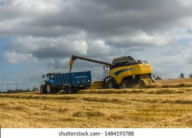 Barley harvest near Kippielaw, East Lothian, Scotland.