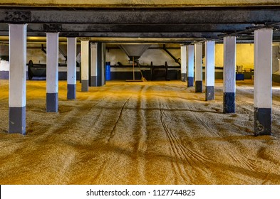 Barley malt on malting floor in the distillery, whisky making process, Scotland, United Kingdom