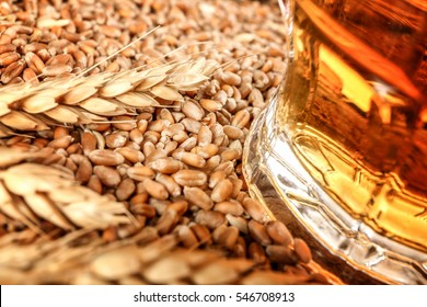 Barley seeds and glass of beer, close up