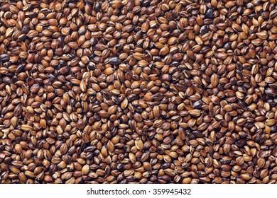 barley tea, Six-row barley tea , Roasted barley tea , Roasted six-row barley tea , Mugicha , Rokujyo mugi cha