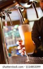 The barman pours light unfiltered beer from the tap
