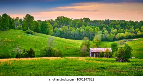 Barn with Cows Grazing on Hillside