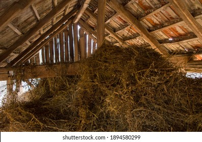 Barn full of hay. Hay stored in a barn on a farm. Old wooden barn full of hay with light shining through the wooden boards. Dry straw. Place for animal feed storage