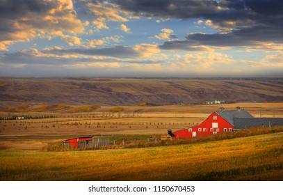 Barn in the middle of Prairies in Alberta