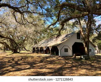 Barn on Cumberland Island, Georgia, surrounded by trees with Spanish moss