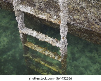 Barnacle encrusted metal ladder into water on sea wall in Inner Harbor of Victoria British Columbia Canada.  Water is green and clear
