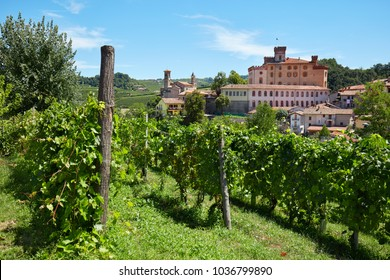 BAROLO, ITALY - AUGUST 6: Barolo medieval castle and vineyards in Piedmont on Langhe hills on August 6, 2016 in Italy. The entire area is Unesco world heritage site.