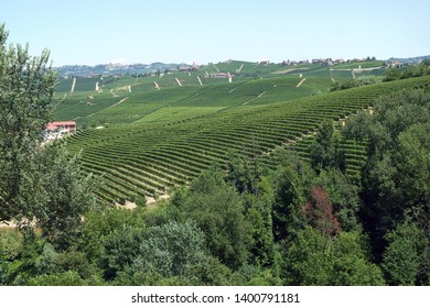 Barolo, Piedmont/Italy-View on the Langhe vineyards from the Barolo castle.