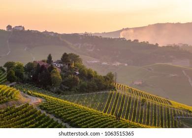 Barolo wine region, Langhe, Piedemont, Italy