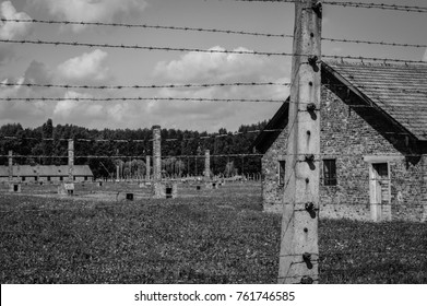 Barrack and the wired fence in Auschwitz-Birkenau, Poland, black and white