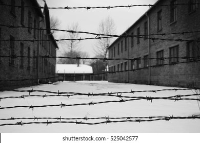 Barracks and barbed wire in a concentration camp in Auschwitz (Poland)