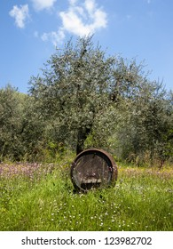 Barrel in the countryside