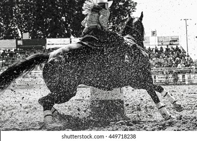 A barrel racer at a rodeo makes an explosive turn around one of the barrels, sending arena sand flying in all directions, as the athletic horse and rider try to win the rodeo (black and white image).