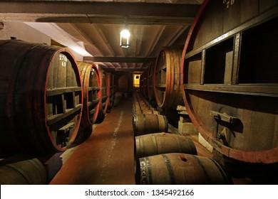 Barrels in Vineyard, close to Colonia, Uruguay