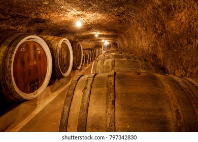 barrels with the wine in the old basement