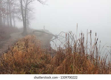 Barren autumn trees, dying grasses and dense fog surround at  lands endas a fisherman casts into the murky water.