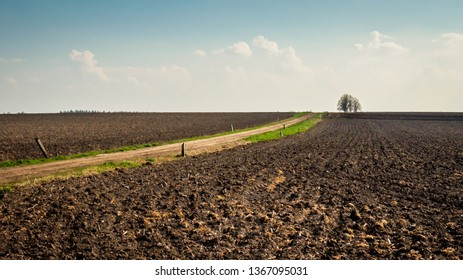 Barren farmland and typical Dutch landscape near the town of Den Ham in the region of Twente (Overijssel, The Netherlands) in April during Spring. Nature here suffers a lot from the use of Glyphosate