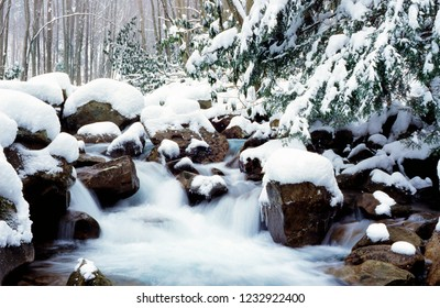 Barrenshe Run in Monongahela National Forest, West Virginia covered in heavy snow