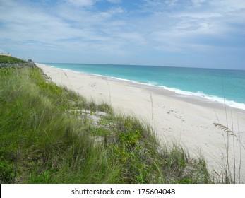 Barrier Island Sanctuary Florida
