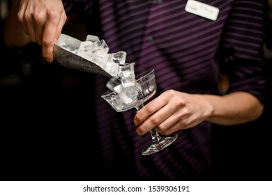 Bartender adding an ice cubes to the empty cocktail glass with a steel paddle on the bar counter