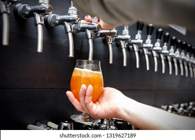 Bartender pouring the fresh beer in pub, Close up of male hands of barman. He is holding a glass and taping beer. - Shutterstock ID 1319627189