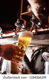 bartender pours a light beer close up