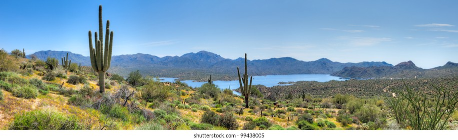 Bartlett Lake and blooming Sonoran Desert with Saguaros. HDR composition.