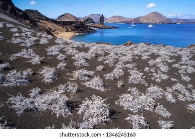 Bartolome Island in the Galapagos Islands on Ecuador