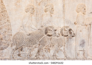 Bas relief sculpture of Human and goats carving on the wall in Persepolis,Shiraz,Iran.