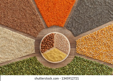 The base for a healthy diversified diet - grains, seeds, cereals and nuts variety in a colorful arrangement