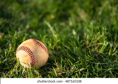 Baseball close up on grass