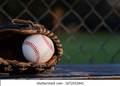 Baseball in glove close up sitting on dugout bench, copy space on blurred background.