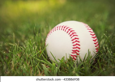a baseball in the grass in the late afternoon sun
