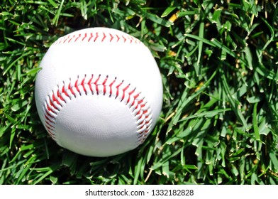 Baseball sitting in the grass, room for your copy.
