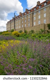BaseCamp with some blured flowers in the foreground, Copenhagen, Denmark - 23 Jun 2018: It offers fully furnished rooms with high-end comfort for students. Besides, it is near Rosenborg Slot.