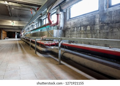 In the basement of a large building, industrial pipes and electrical cable are running tallest along the wall