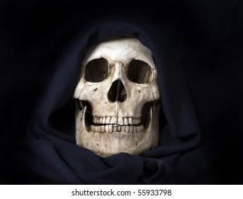 Basic human skull photographed indoors.