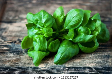 Basil  bunch on wooden table background. Selective focus, shallow depth of field