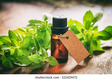 Basil essential oil and fresh twig on wooden background. Blank tag with space for text