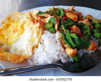 Basil fried chicken and fried egg with rice