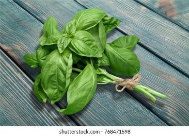 Basil, herb, freshness.