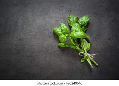 Basil leaves at dark slate background. Space for text.
