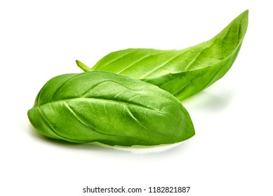 Basil leaves spice closeup, isolated on white background
