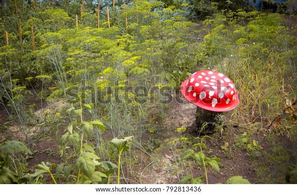 Basin Mushroom Fly Agaric Garden Decor Stock Photo Edit Now