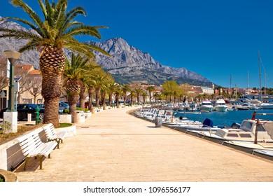 Baska Voda palm waterfront view, in Makarska riviera, Dalmatia region of Croatia - Shutterstock ID 1096556177